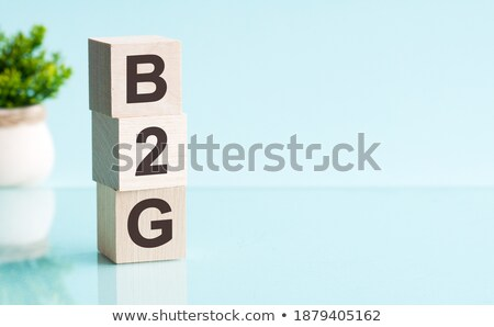 Acronym of B2G - Business to government Stock photo © bbbar
