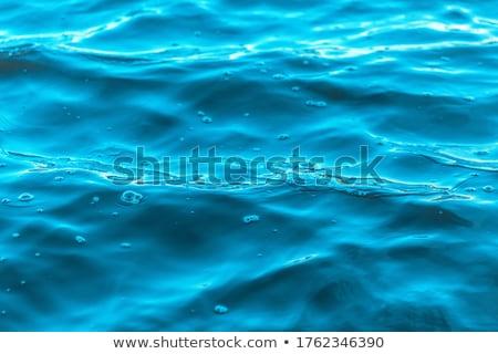 Precioso agua morena mujer agua embotellada Foto stock © lithian