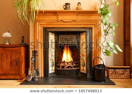 Carvão fogo lareira madeira natureza fundo Foto stock © ruzanna