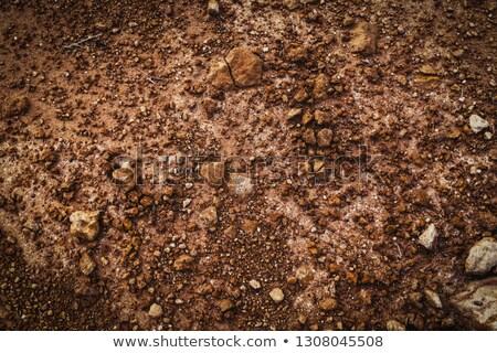 Agyag föld terméketlen barna sivatag kosz Stock fotó © ozaiachin