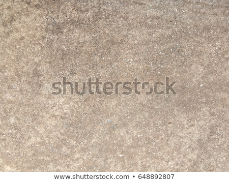 Seamless Texture of Dirty Rocky Ground. Stock photo © tashatuvango