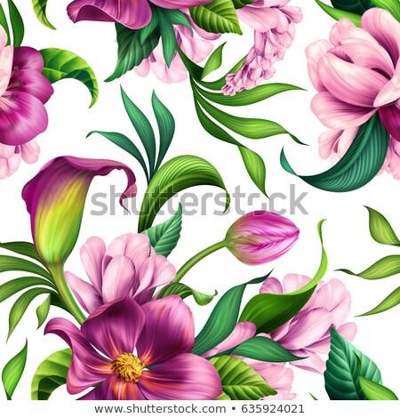 minta · virágok · orchideák · fényes · absztrakció · rózsaszín - stock fotó © tanya_golovanova