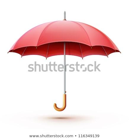 abstrato · guarda-chuva · ícone · computador · azul · objeto - foto stock © gladiolus