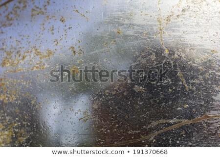 rústico · espejo · vintage · estilo · frontera · marco - foto stock © dutourdumonde