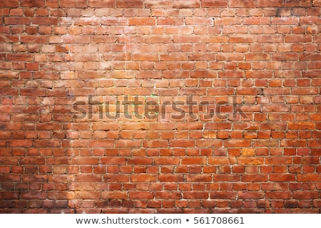 áspero · pared · de · ladrillo · construcción · pared · calle · negro - foto stock © zhekos