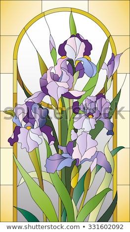 Vetrate modello di fiore texture vetro finestra pittura Foto d'archivio © amok