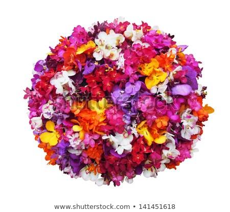 Labda virágok futball fű réteges illusztráció Stock fotó © DzoniBeCool