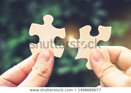 businessman joining puzzle pieces on grass stock photo © andreypopov
