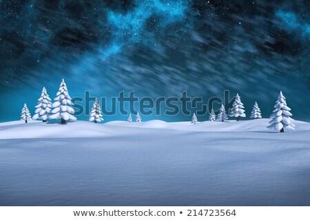 Digitally generated white snowy landscape Stock photo © wavebreak_media