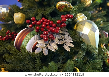 Christmas card from Christmas trees and clusters of mountain ash children's mittens and snowballs Stock photo © mcherevan