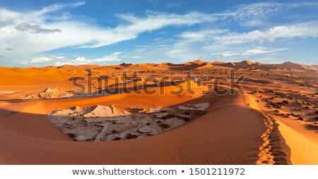 Güzel gündoğumu manzara gizlenmiş ölü mavi gökyüzü Stok fotoğraf © artush