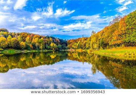 Lake and Tree Stock photo © dirkr