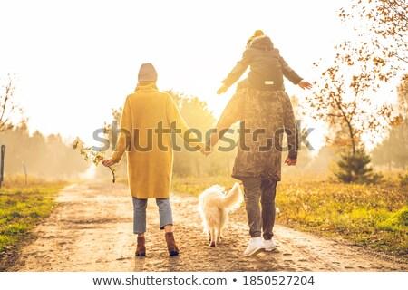 Stock fotó: Anya · fiú · kezek · park · ősz · család