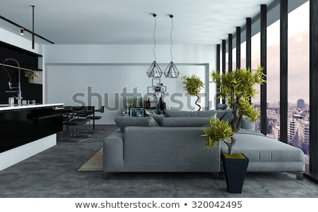 Luxurious livng room with two areas Stock photo © jrstock