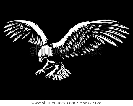 Sas kabala szárnyak férfi iskola madár Stock fotó © doddis