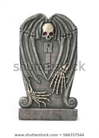 desenho · animado · esqueleto · preto · robe · projeto · arte - foto stock © doomko
