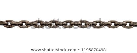 Foto d'archivio: Acciaio · catena · isolato · bianco · abstract · metal