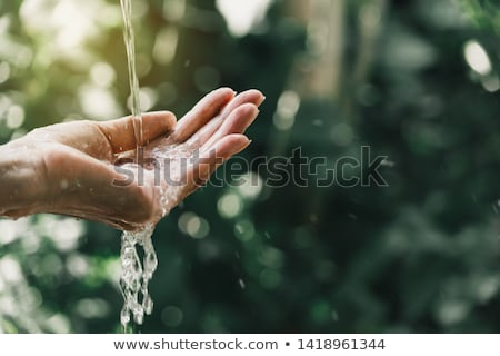 closeup of hands and water flowing Stock photo © Giulio_Fornasar