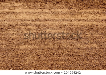 Country dirt road texture Stock photo © stevanovicigor