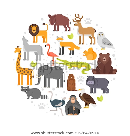 round composition of zoo animals icons stock photo © curiosity