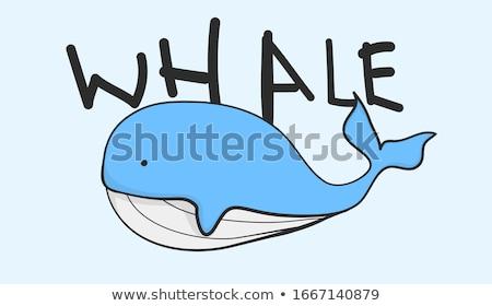 Rózsaszín bálna fehér illusztráció művészet trópusi Stock fotó © bluering