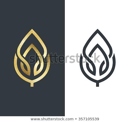 vector ecology logo or icon nature logotype stock photo © barsrsind