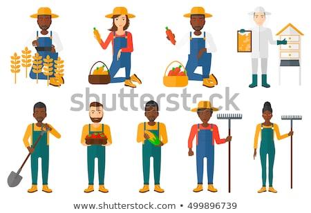 Stockfoto: Landbouwer · verzamelen · mais · glimlachend · gelukkig