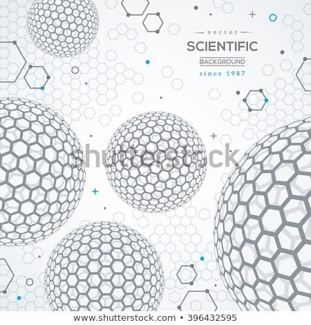 abstrato · hexágono · wireframe · superfície · branco · tecnologia - foto stock © anadmist