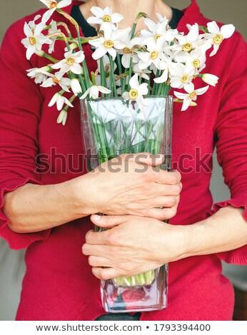 Woman holding vase with narcissus  Stock photo © ifeelstock