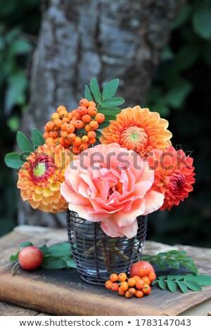 Bouquet floraison jaune roses vintage vase Photo stock © Melnyk