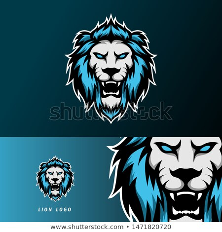 Soccer ball Logo Design for Esports, Sport Team Stock photo © SaqibStudio