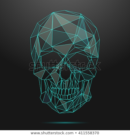 skull linear style head of skeleton vector illustration stock photo © maryvalery