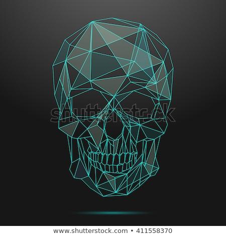 Crânio linear estilo cabeça esqueleto abstrato Foto stock © MaryValery