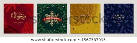 natal · coroa · visco · feliz · cartão - foto stock © tarikvision