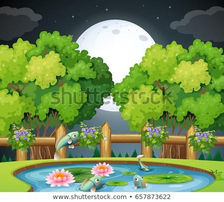 jelenet · kert · illusztráció · fű · fa · erdő - stock fotó © colematt
