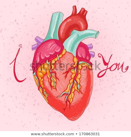 herido · amor · rojo · corazón · flecha · arte · pop - foto stock © rogistok