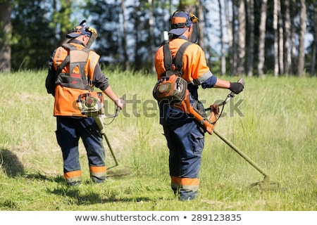 lawn mower worker. Profession and service Stock photo © studiostoks