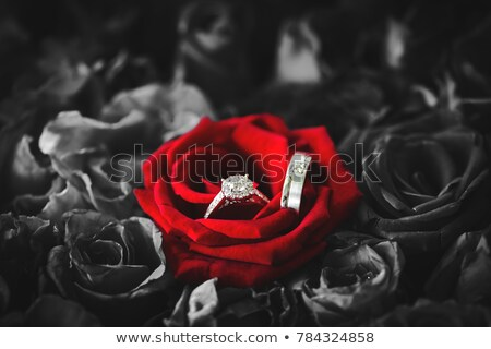 Сток-фото: Engagement Ring Inside Of Red Rose