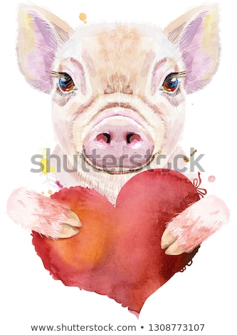 Aquarel portret varken Rood hart cute Stockfoto © Natalia_1947