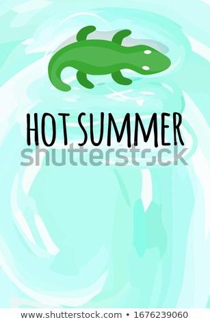 krokodil · gator · aligátor · vektor · rajzfilm · kabala · kép - stock fotó © robuart
