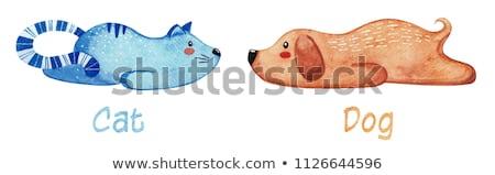 Ayarlamak sevimli hayvanlar tembel kedi köpek suluboya Stok fotoğraf © Arkadivna