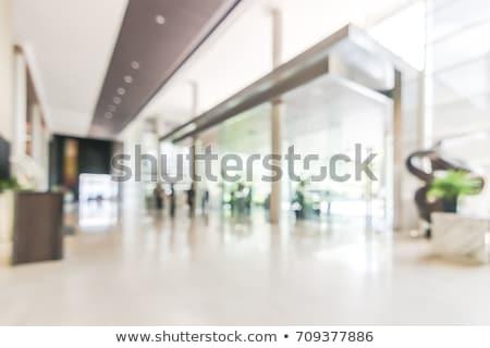 Biały hotel lobby zielone roślin Zdjęcia stock © dariazu