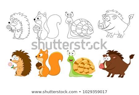 Wild mannetjesvarken karakter kleurboek pagina Stockfoto © izakowski