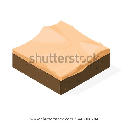 Sandy Landscape isometric icon vector illustration Stock photo © pikepicture