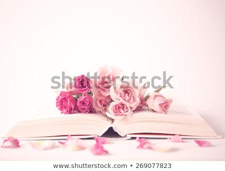 Розовые розы книга зеленый бумаги школы работу Сток-фото © inaquim