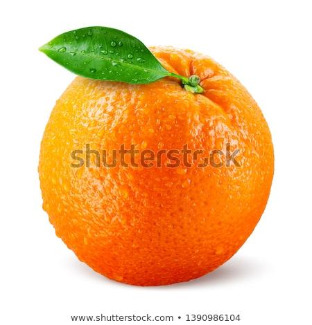 Taze portakal seçilmiş beyaz doğa meyve Stok fotoğraf © luiscar