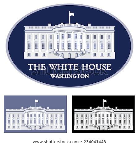 White House - detailed vector illustration Stock photo © Slobelix