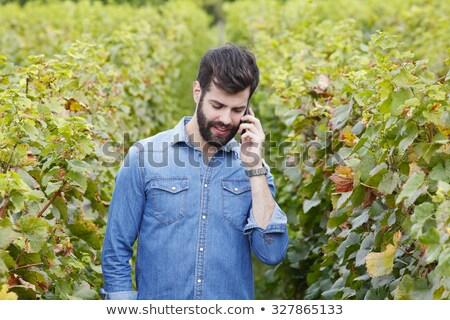 empresario · gris · traje · hablar · celular · teléfono · celular - foto stock © photography33