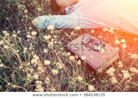 reading, flower book in sunshine Stock photo © photography33