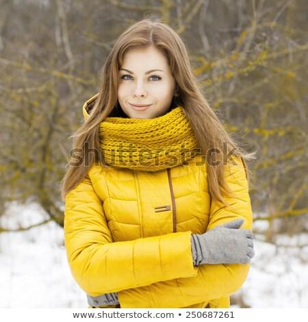 mulher · bonita · amarelo · tricotado · jaqueta · jovem · isolado - foto stock © acidgrey